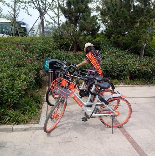 """旅游学院开展""""拯救共享单车""""志愿服务活动-青岛职业"""